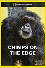 Chimps on the Edge